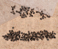 Coffee beans and Jute cloth Stock Photography