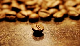 Coffee. Coffee beans. Coffee kernel. Arabica. Drink. Coffee kernel on the background of coffee beans. Aromatic roasted grains of Arabica coffee on a dark royalty free stock photos