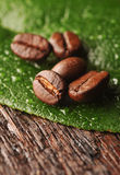 Coffee beans and leaf Stock Photos