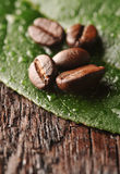 Coffee beans and leaf. On the wooden background Stock Photos
