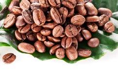 Coffee beans. Royalty Free Stock Photos