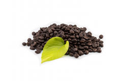 Coffee beans with leaf on white background Stock Photography
