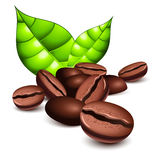 Coffee beans and leaves. Over white stock illustration