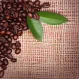 Coffee Beans and Leaves on Burlap Stock Image
