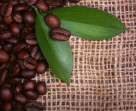 Coffee Beans and Leaves on Burlap Stock Photos