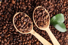 Coffee beans with leaves in wooden spoon Royalty Free Stock Photography