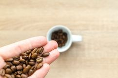 Coffee Beans on Left Hand Stock Image