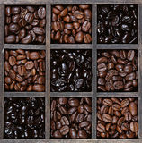 Coffee beans light to dark roast Royalty Free Stock Image