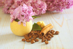 Coffee beans lilac flower still life Royalty Free Stock Photo
