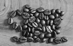Coffee beans lined as a coffee Royalty Free Stock Photo