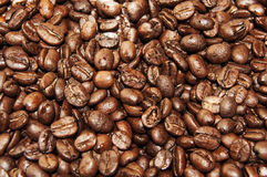 Coffee beans. A lot of coffee beans Royalty Free Stock Photography