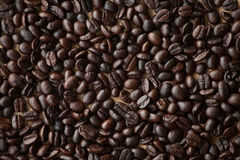 Coffee Beans. A lot of people like to drink coffee Stock Image