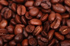 Coffee beans in low key Royalty Free Stock Photography