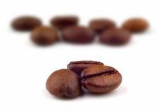 Coffee beans macro Stock Photos