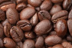 Coffee beans macro as a  background Royalty Free Stock Photos