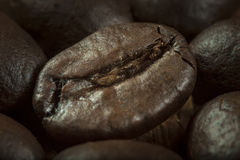 Coffee beans, macro Stock Images