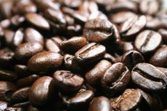 Coffee Beans With Macro Close Up High Quality
