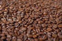 Coffee beans macro shot Stock Images