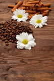 Coffee beans. Magic beans of coffee with rich aroma adorned with white flowers Stock Photography
