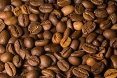 Coffee beans mass macro. Macro of coffee beans mass surface Royalty Free Stock Photography