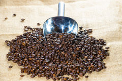Coffee beans with measuring scoop Royalty Free Stock Photography