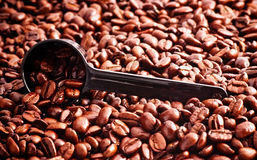 Coffee Beans and Measuring Spoon Royalty Free Stock Photography