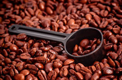 Coffee Beans and Measuring Spoon Stock Image