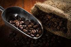 Coffee beans in metal scoop and gunny sack. Royalty Free Stock Photo