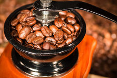 Coffee beans in a mill. Royalty Free Stock Photos