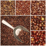 Coffee beans mixtures collage Stock Photo
