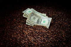 Coffee beans with money Royalty Free Stock Images