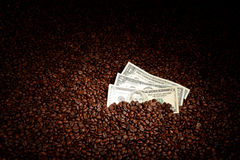 Coffee beans with money. stock photography