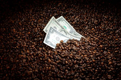 Coffee beans with money. Coffee business concept Royalty Free Stock Images