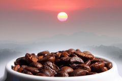 Coffee beans mountain and sun Stock Photo