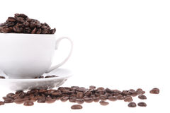 Coffee beans with mug Stock Image