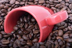 Coffee Beans and mug Royalty Free Stock Photos