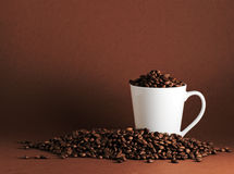 Coffee beans and mug. White mug surrounded by coffee beans on coffee colored background with plenty of copy space Royalty Free Stock Images
