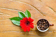 Coffee beans in a mug with flower and leaves. Top view Stock Images