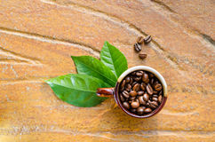 Coffee beans in a mug with leaves. Top view Stock Photography