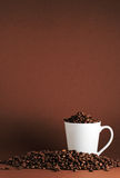 Coffee beans and mug port. White mug surrounded by coffee beans on coffee colored background with plenty of copy space Stock Photos