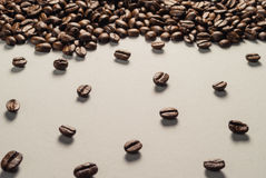 Coffee beans on Neutral Gray Background. Dark Roast Coffee. Stock Photography