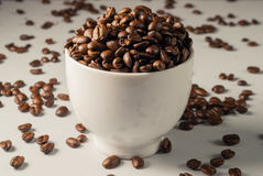 Coffee beans on Neutral Gray Background. Dark Roast Coffee. White Stock Images
