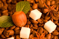 Coffee beans, nut and sugar Royalty Free Stock Photography