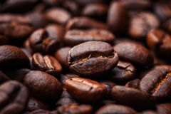 Coffee beans o. N wood background Stock Photos