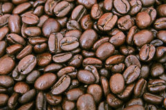Coffee beans - office stimulant. Lots of natural coffee beans, macro closeup, close-up with copy space Royalty Free Stock Images