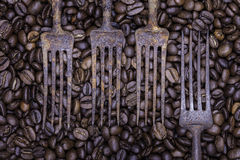 Coffee beans and old fork still life Royalty Free Stock Photography