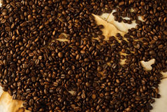 Coffee beans on old paper. Roasted coffee beans on old burned paper Stock Photos