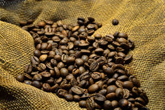 Coffee beans on the old sacking. Coffee beans on the background of old sacking Stock Image