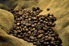 Coffee beans on the old sacking. Coffee beans on the background of old sacking Royalty Free Stock Photos