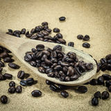 Coffee beans in an old wooden scoop Royalty Free Stock Photos